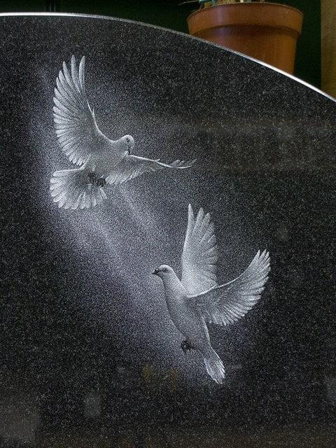 памятник голуби